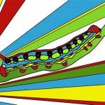florida caterpillar by lisa karen ward
