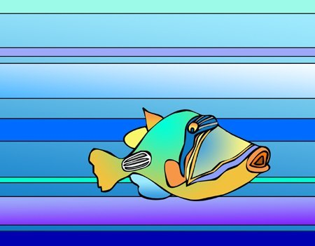 Picasso Triggerfish medium